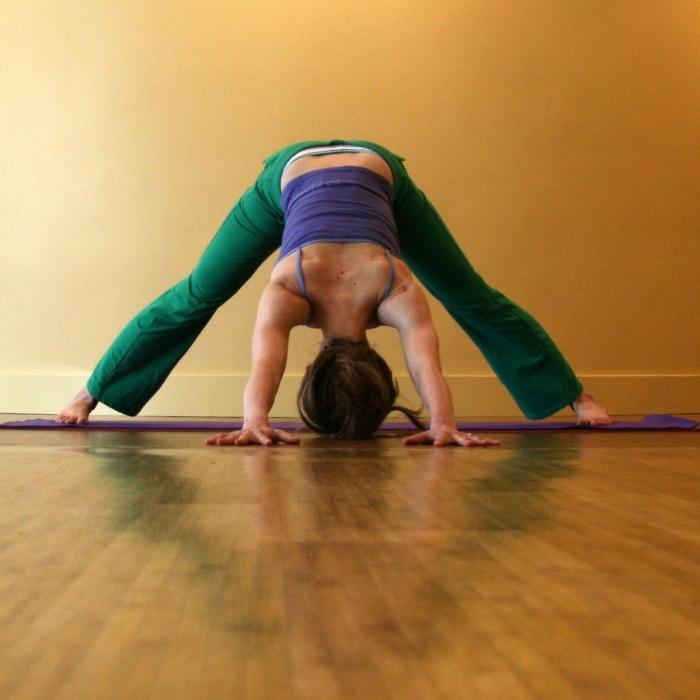 Kelly Connor Sunrose Yoga// Online Yoga Classes// Prasarita Padottanasana variation