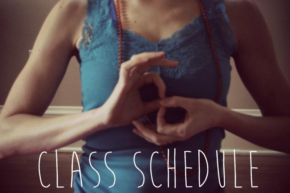dharmachakra schedule