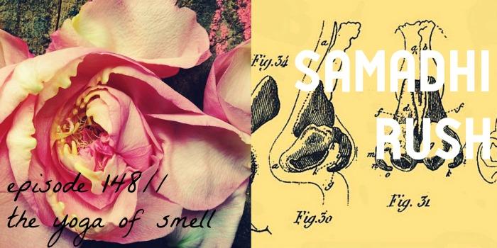 pratyahara// smell// subtle realm// yoga